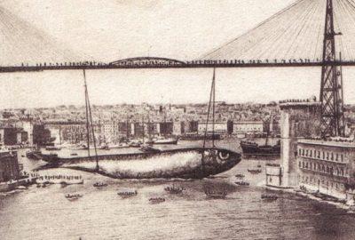 Sardine vieux-port de Marseille